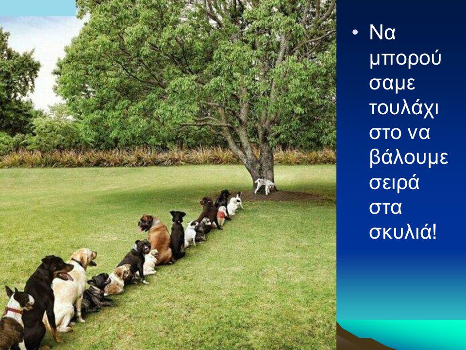 Να μπορούσαμε τουλάχιστο να βάλουμε σειρά στα σκυλιά!