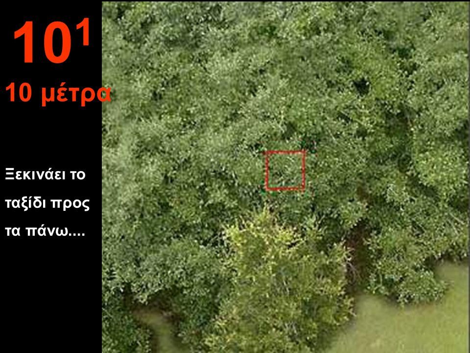 101 10 μέτρα Ξεκινάει το ταξίδι προς τα πάνω....