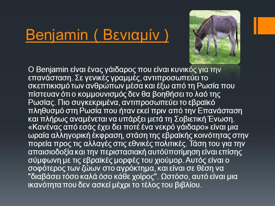 Benjamin ( Βενιαμίν )