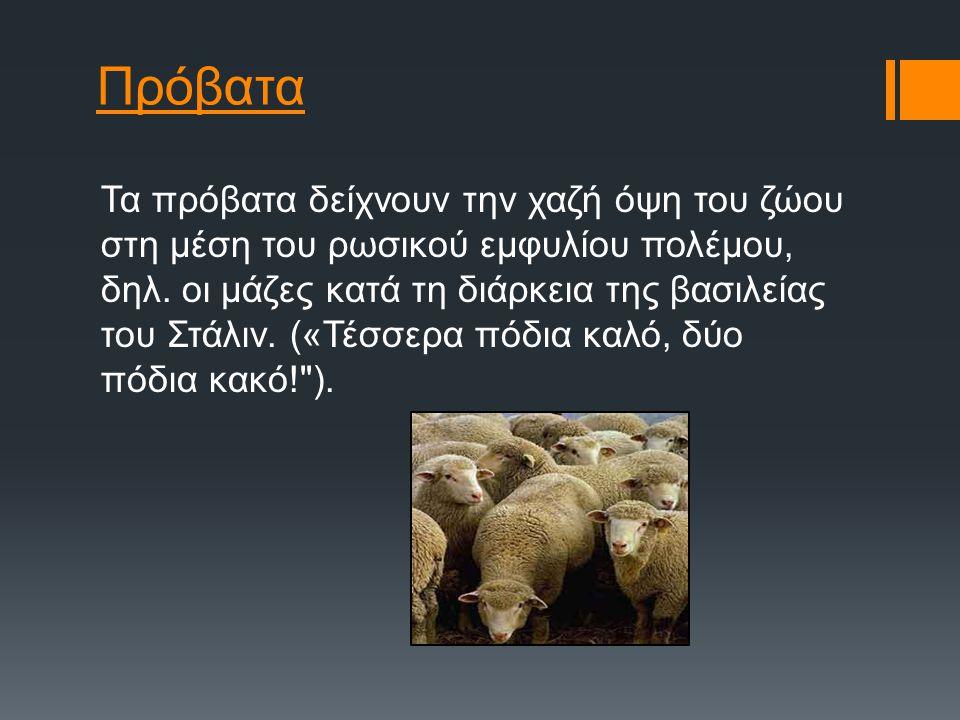 Πρόβατα