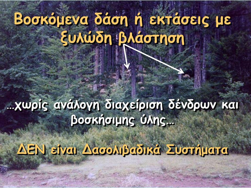 Βοσκόμενα δάση ή εκτάσεις με ξυλώδη βλάστηση