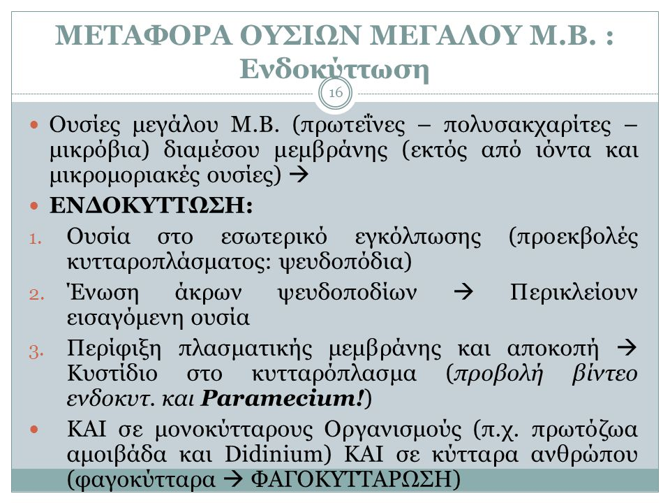 ΜΕΤΑΦΟΡΑ ΟΥΣΙΩΝ ΜΕΓΑΛΟΥ Μ.Β. : Ενδοκύττωση