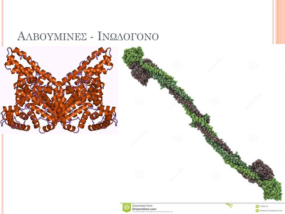 Αλβουμινες - Ινωδογονο