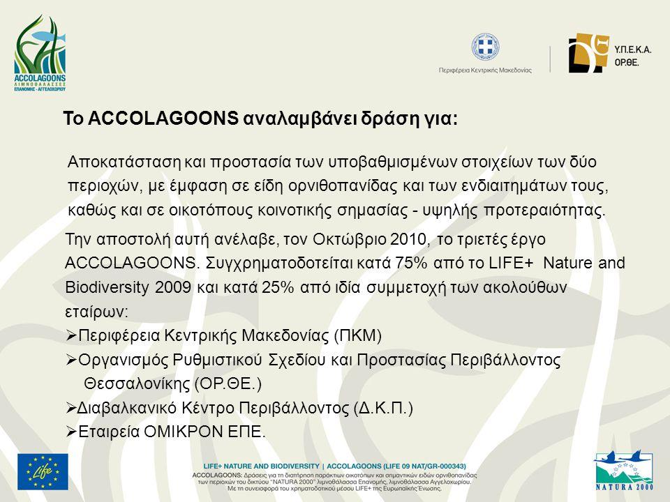 To ACCOLAGOONS αναλαμβάνει δράση για: