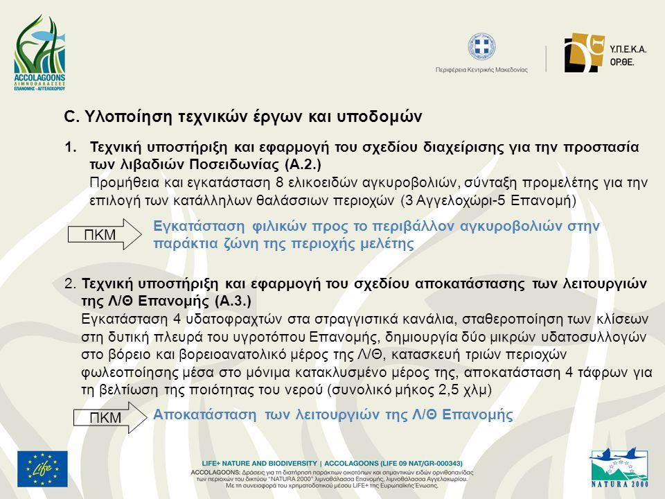 C. Υλοποίηση τεχνικών έργων και υποδομών