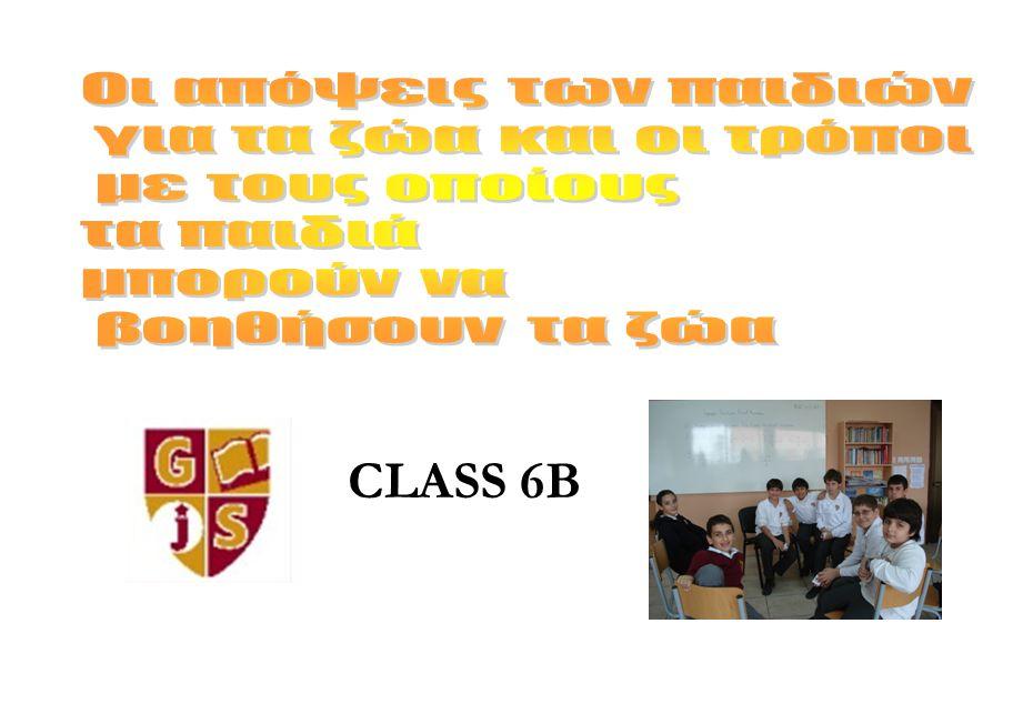 CLASS 6B Οι απόψεις των παιδιών για τα ζώα και οι τρόποι