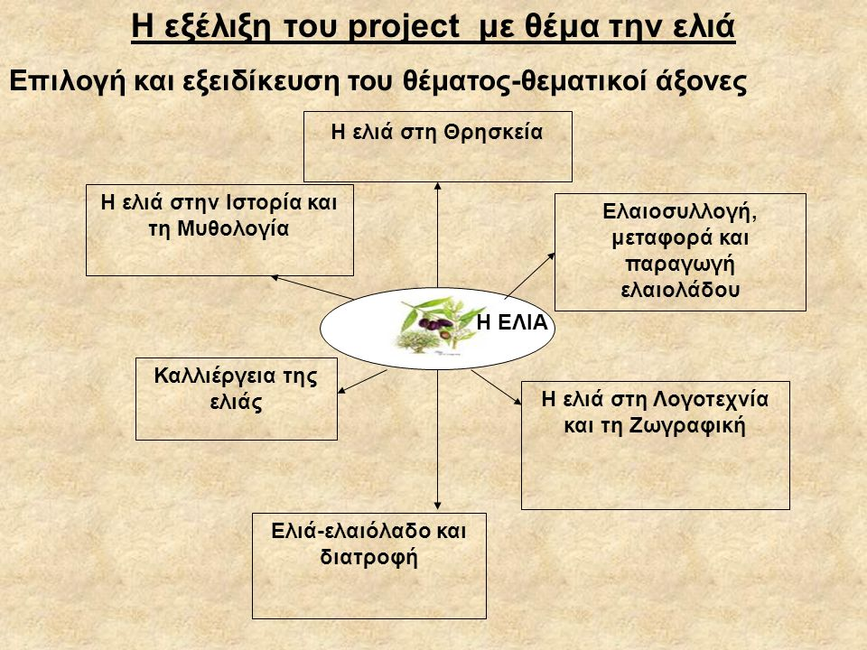 Η εξέλιξη του project με θέμα την ελιά