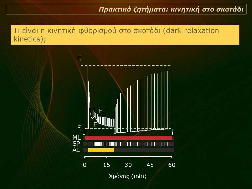 Τι είναι η κινητική φθορισμού στο σκοτάδι (dark relaxation kinetics);