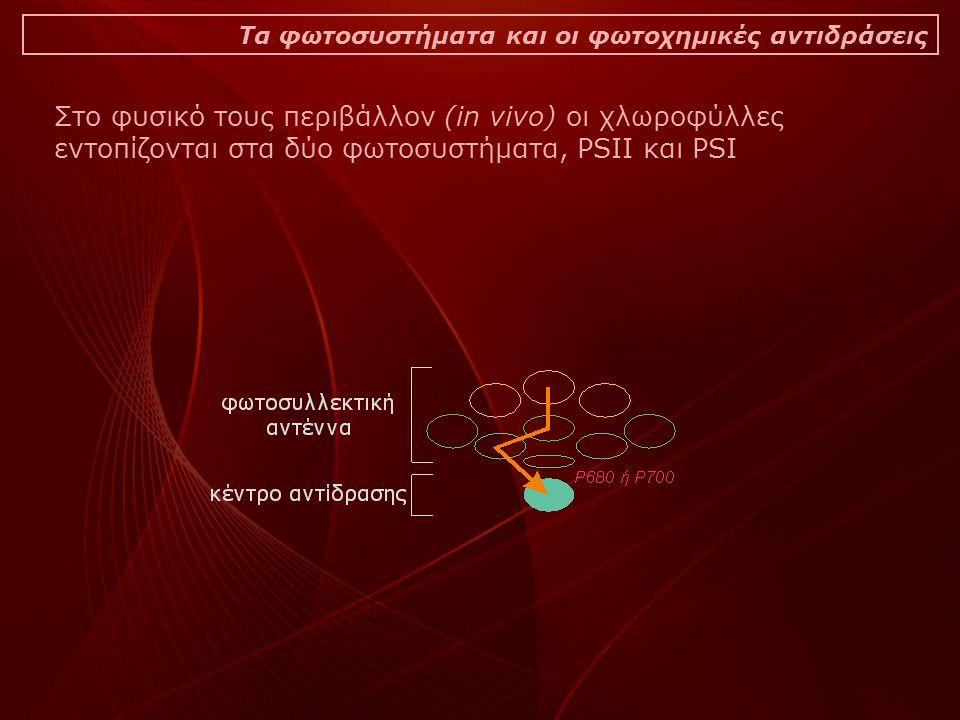 Τα φωτοσυστήματα και οι φωτοχημικές αντιδράσεις