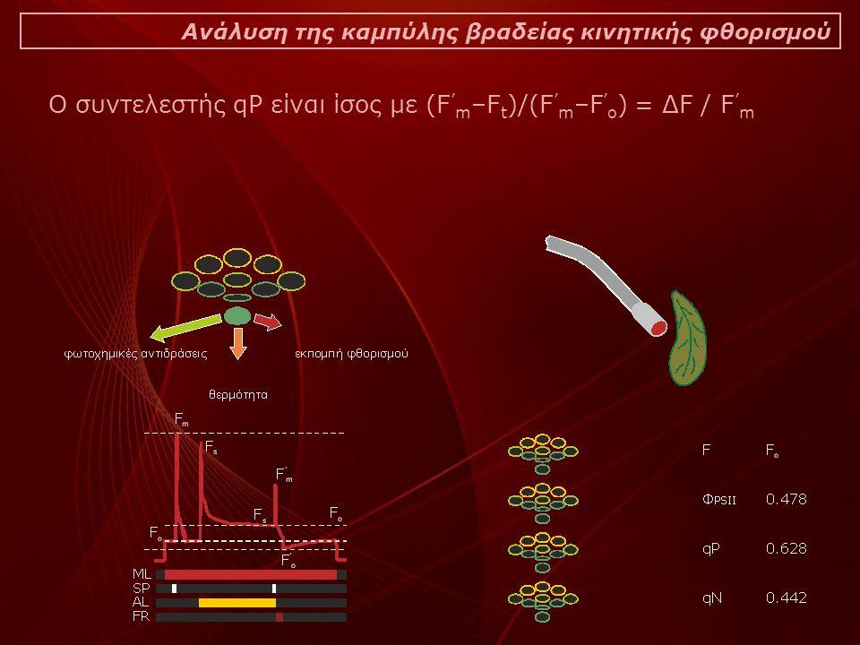 Ο συντελεστής qP είναι ίσος με (F'm–Ft)/(F'm–F'o) = ΔF / F'm