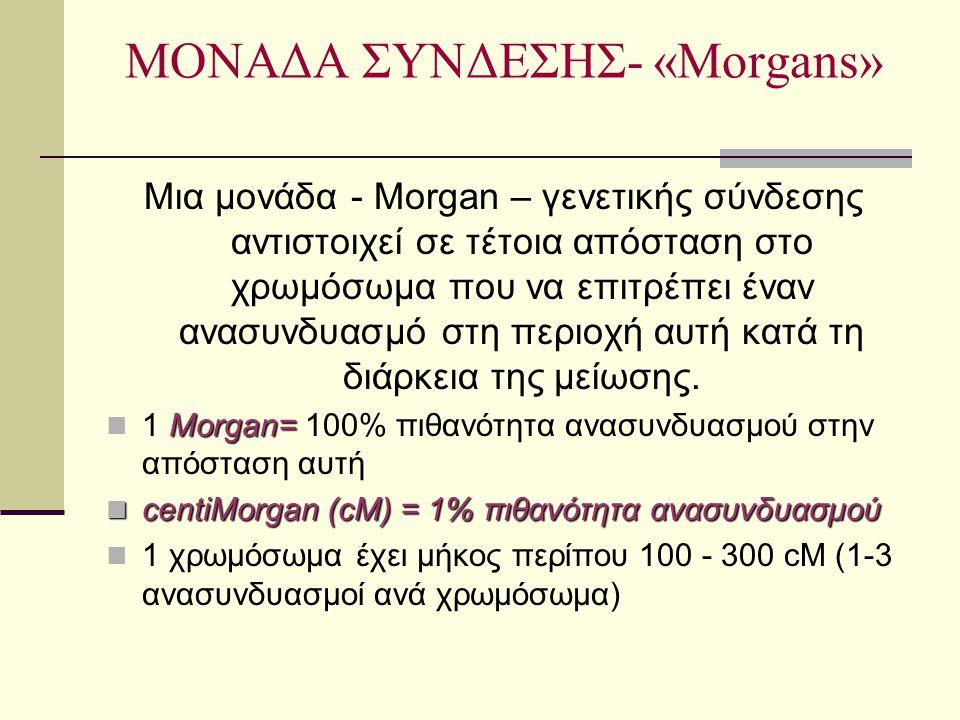 ΜΟΝΑΔΑ ΣΥΝΔΕΣΗΣ- «Morgans»