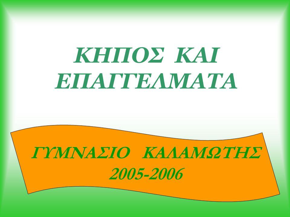 ΚΗΠΟΣ ΚΑΙ ΕΠΑΓΓΕΛΜΑΤΑ ΓΥΜΝΑΣΙΟ ΚΑΛΑΜΩΤΗΣ 2005-2006