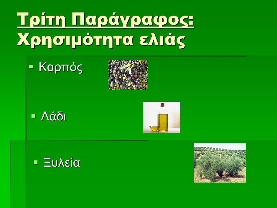 Τρίτη Παράγραφος: Χρησιμότητα ελιάς