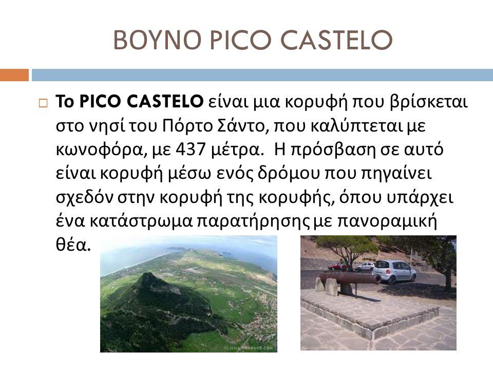 ΒΟΥΝΟ PICO CASTELO
