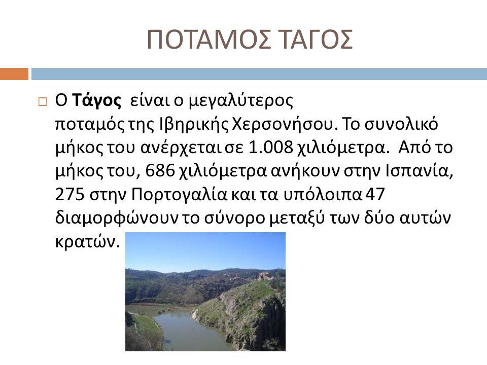 ΠΟΤΑΜΟΣ ΤΑΓΟΣ