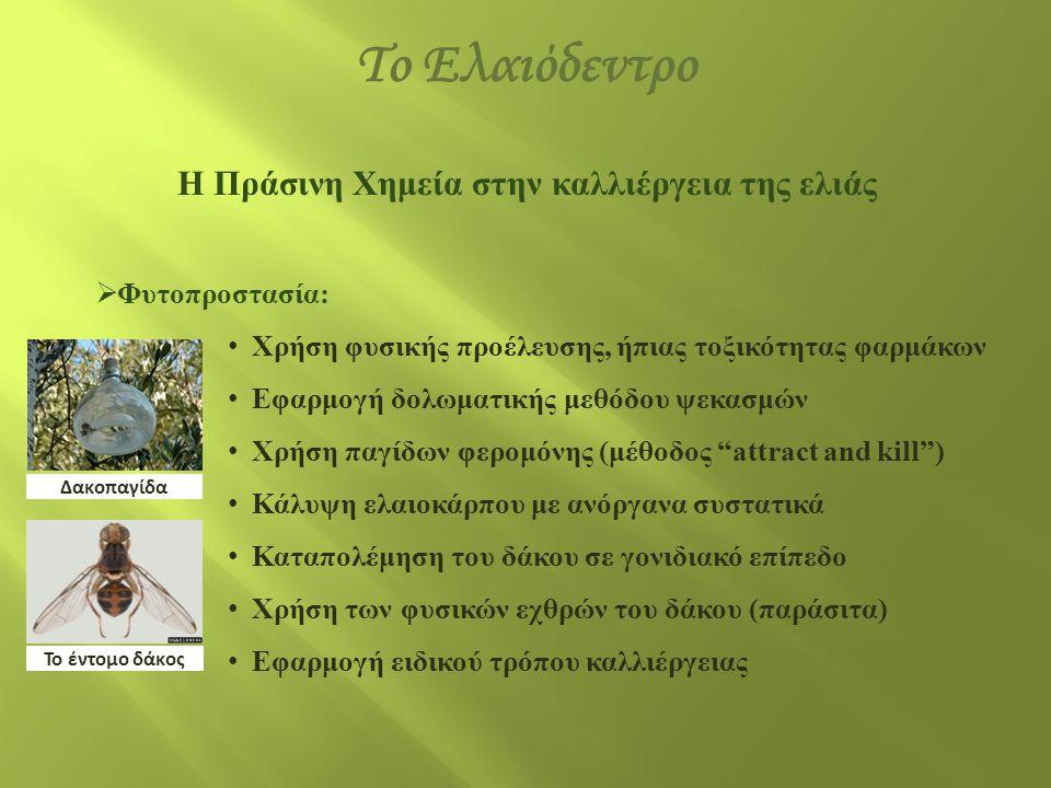 Η Πράσινη Χημεία στην καλλιέργεια της ελιάς