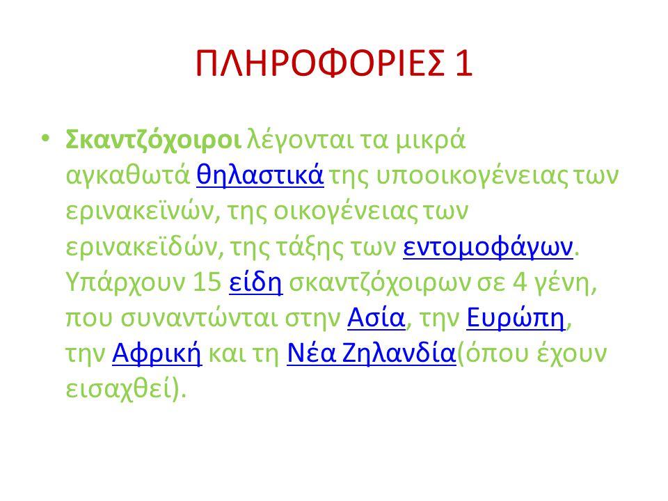 ΠΛΗΡΟΦΟΡΙΕΣ 1