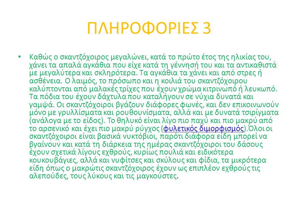 ΠΛΗΡΟΦΟΡΙΕΣ 3