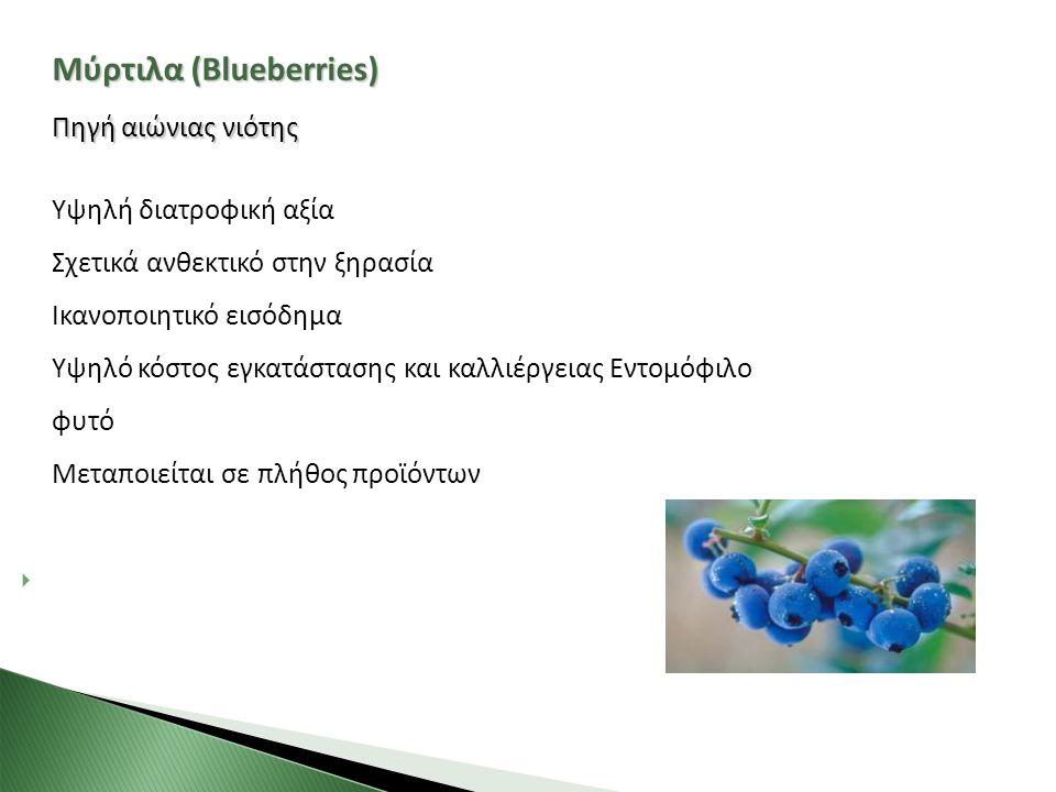 Μύρτιλα (Blueberries)