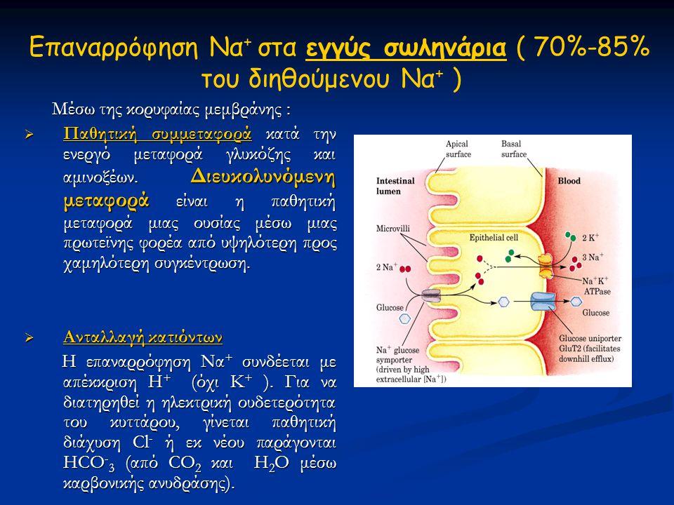 Eπαναρρόφηση Να+ στα εγγύς σωληνάρια ( 70%-85% του διηθούμενου Να+ )