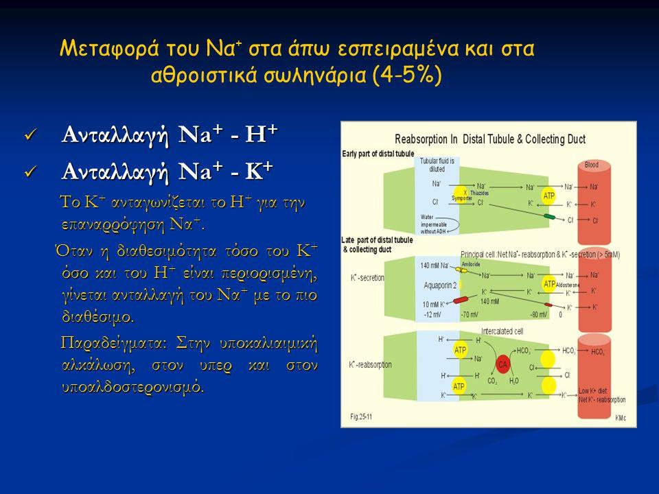 Ανταλλαγή Na+ - Η+ Ανταλλαγή Na+ - Κ+
