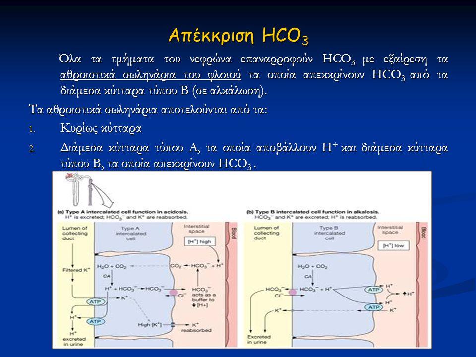 Απέκκριση HCO3