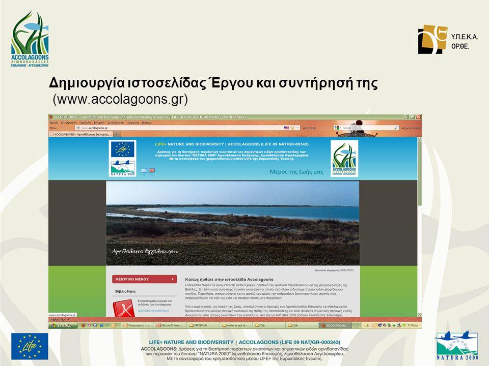 Δημιουργία ιστοσελίδας Έργου και συντήρησή της
