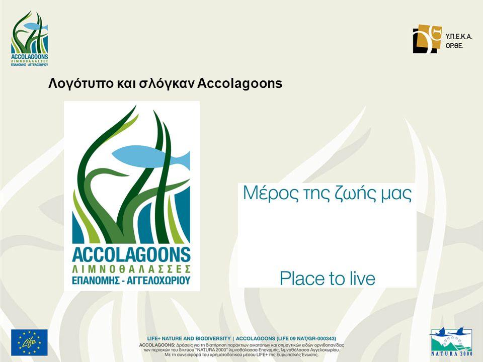 Λογότυπο και σλόγκαν Accolagoons