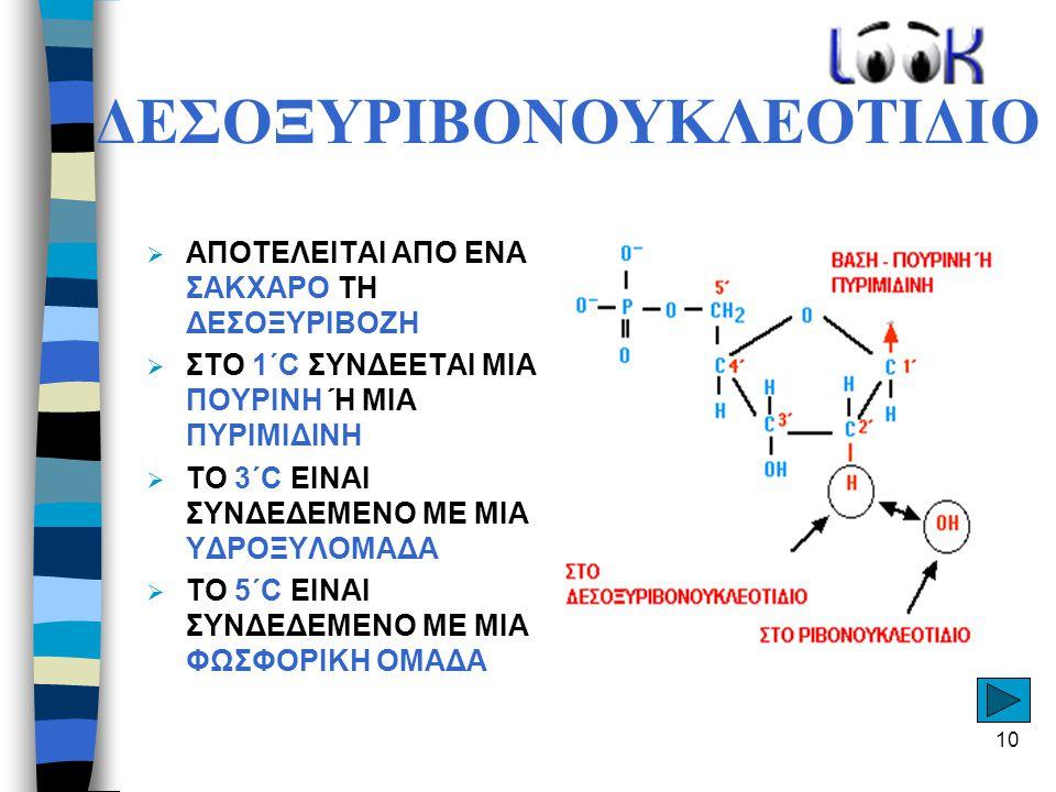 ΔΕΣΟΞΥΡΙΒΟΝΟΥΚΛΕΟΤΙΔΙΟ