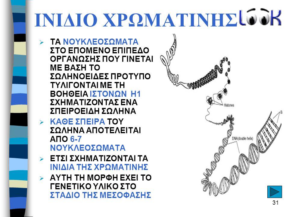 ΙΝΙΔΙΟ ΧΡΩΜΑΤΙΝΗΣ