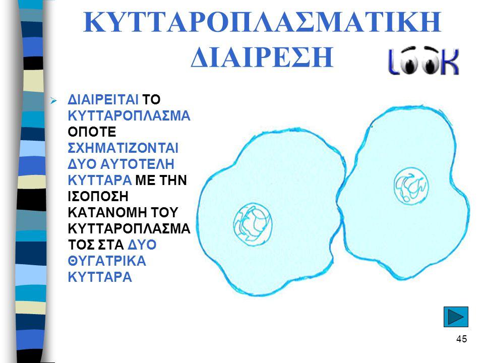 ΚΥΤΤΑΡΟΠΛΑΣΜΑΤΙΚΗ ΔΙΑΙΡΕΣΗ