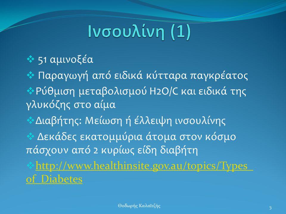Ινσουλίνη (1) 51 αμινοξέα Παραγωγή από ειδικά κύτταρα παγκρέατος
