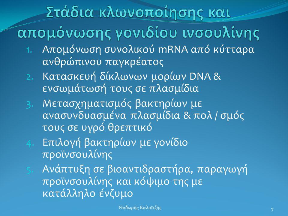 Στάδια κλωνοποίησης και απομόνωσης γονιδίου ινσουλίνης
