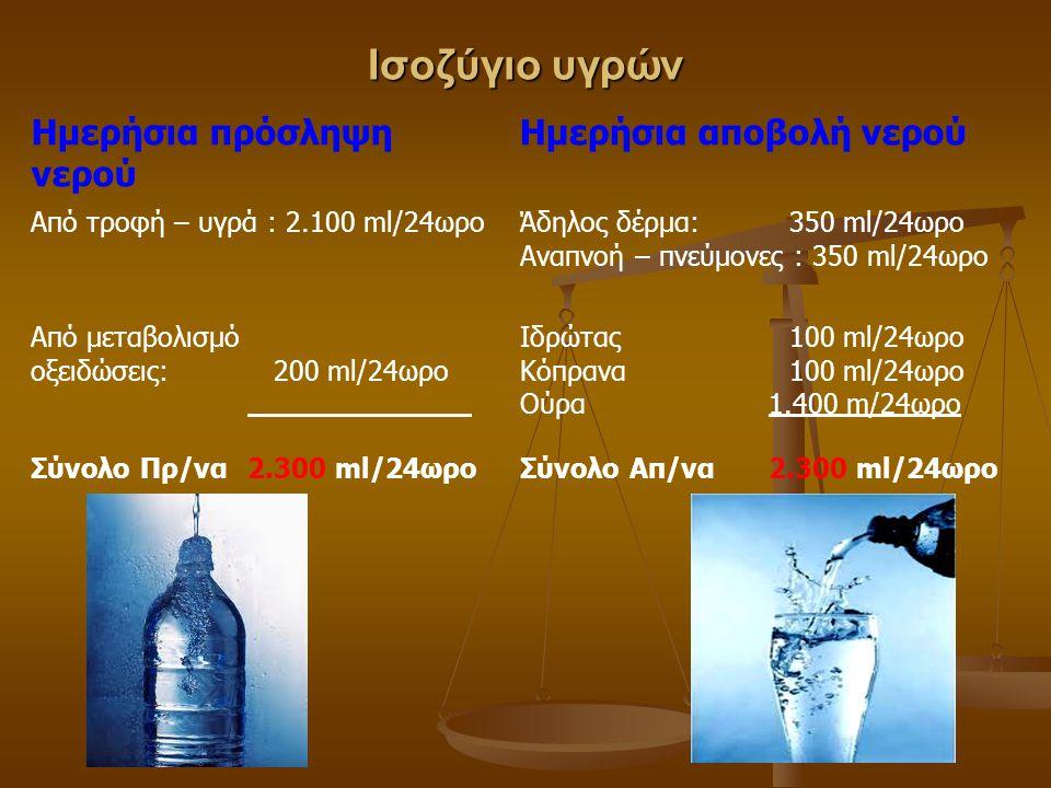 Ισοζύγιο υγρών Ημερήσια πρόσληψη νερού Ημερήσια αποβολή νερού