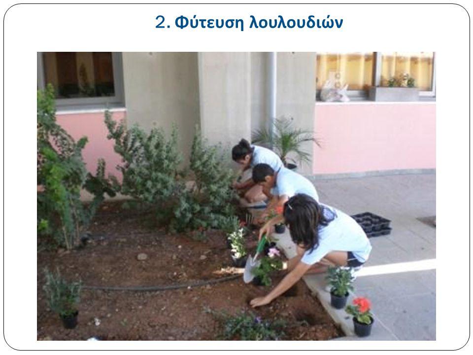 2. Φύτευση λουλουδιών