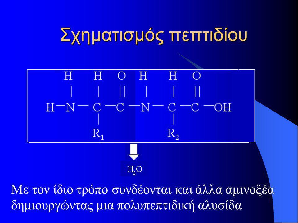 Σχηματισμός πεπτιδίου