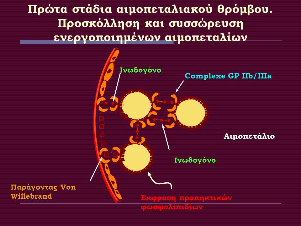 Πρώτα στάδια αιμοπεταλιακού θρόμβου