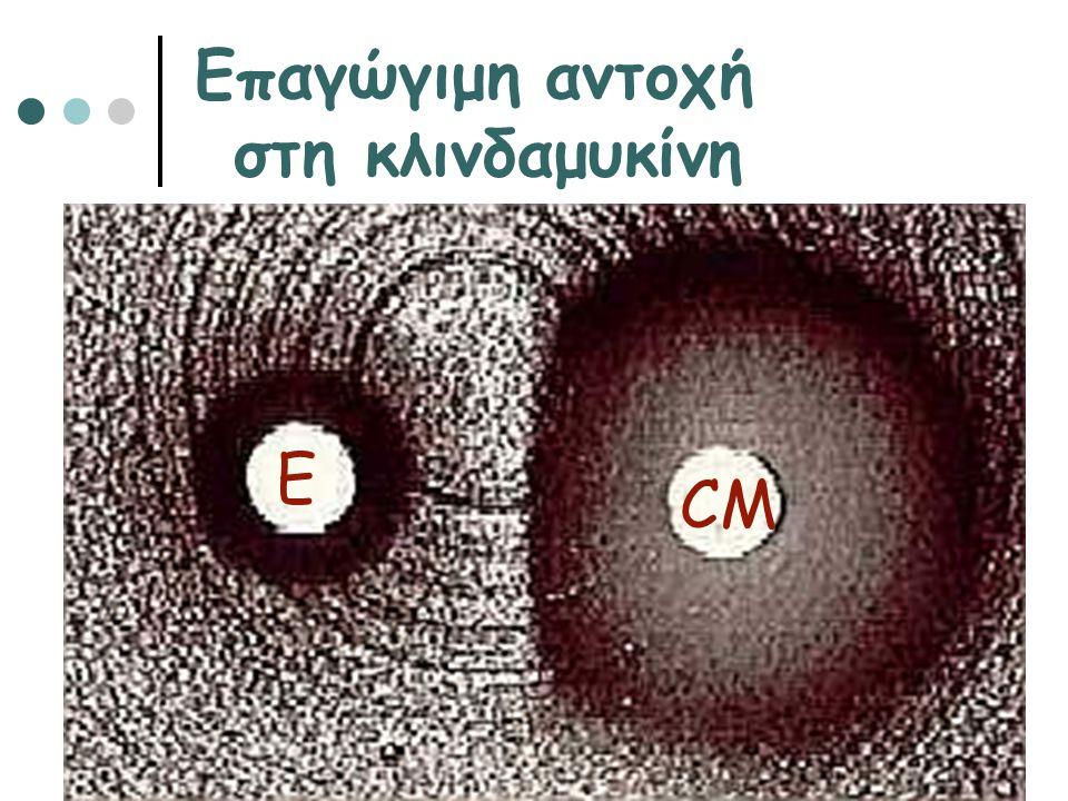 Επαγώγιμη αντοχή στη κλινδαμυκίνη Ε CM