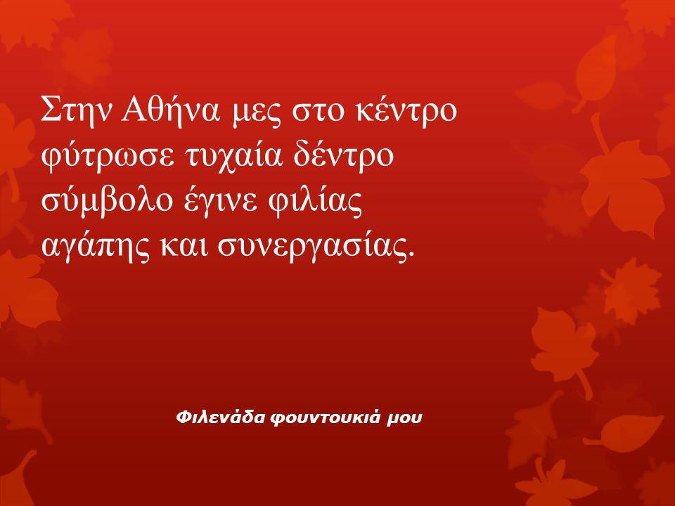 Στην Αθήνα μες στο κέντρο φύτρωσε τυχαία δέντρο σύμβολο έγινε φιλίας αγάπης και συνεργασίας.