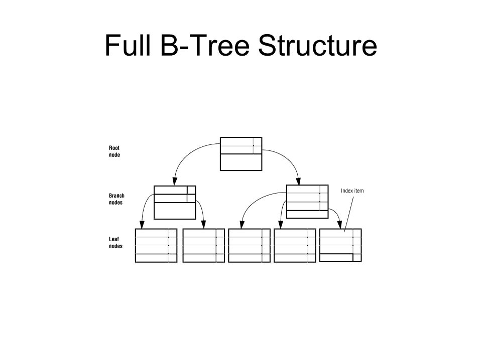 Full B-Tree Structure