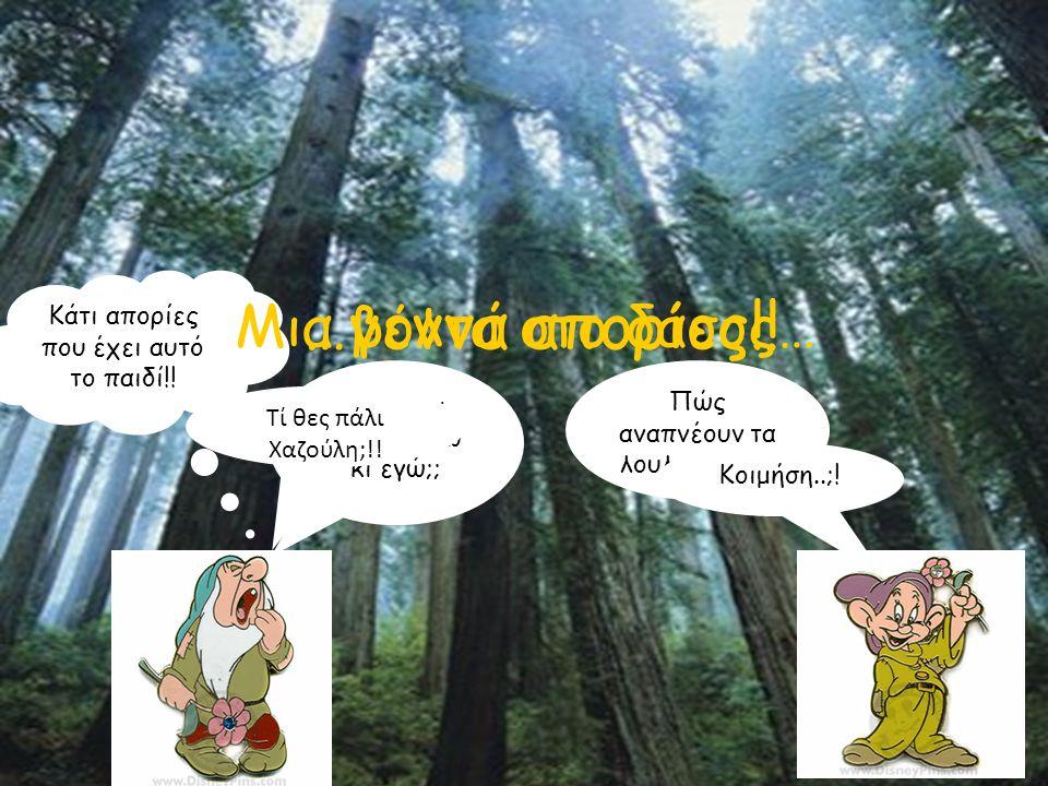 …γεννά απορίες!! Μια βόλτα στο δάσος…