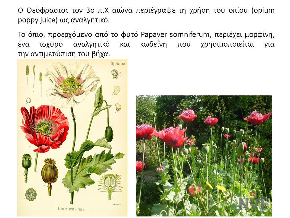Ο Θεόφραστος τον 3ο π.Χ αιώνα περιέγραψε τη χρήση του οπίου (opium poppy juice) ως αναλγητικό.