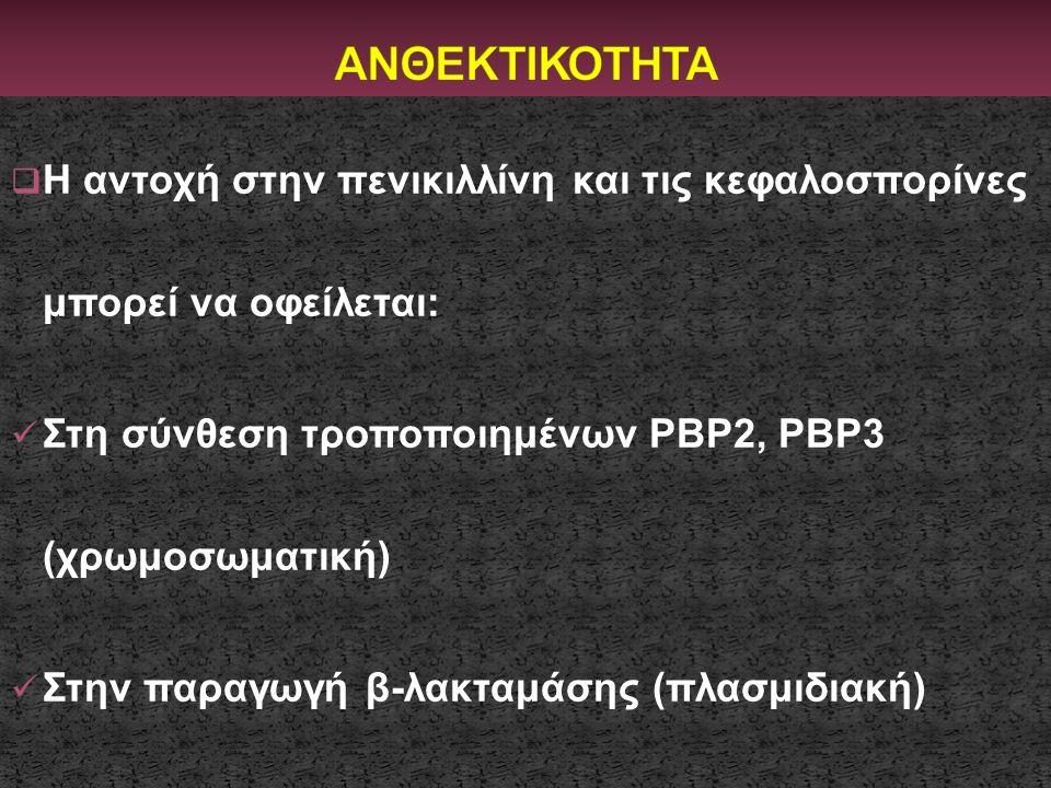 ΑΝΘΕΚΤΙΚΟΤΗΤΑ Η αντοχή στην πενικιλλίνη και τις κεφαλοσπορίνες μπορεί να οφείλεται: Στη σύνθεση τροποποιημένων PBP2, PBP3 (χρωμοσωματική)