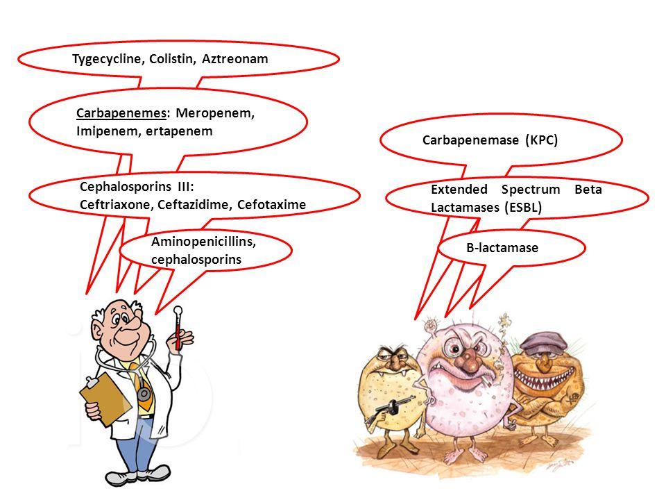 Tygecycline, Colistin, Aztreonam