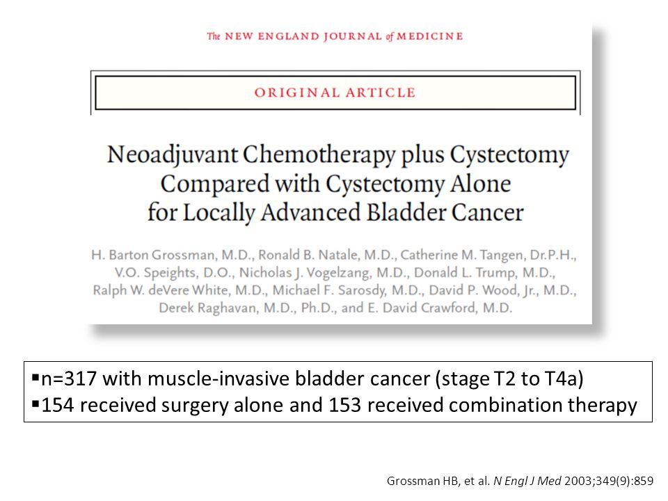 n=317 with muscle-invasive bladder cancer (stage T2 to T4a)
