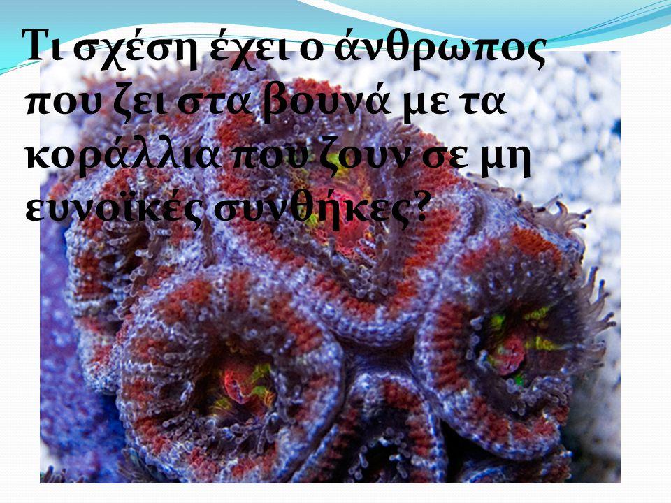 Τι σχέση έχει ο άνθρωπος που ζει στα βουνά με τα κοράλλια που ζουν σε μη ευνοϊκές συνθήκες