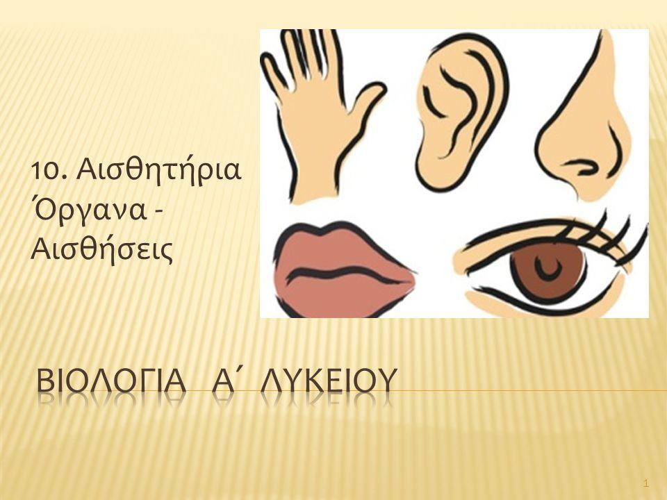10. Αισθητήρια Όργανα - Αισθήσεις