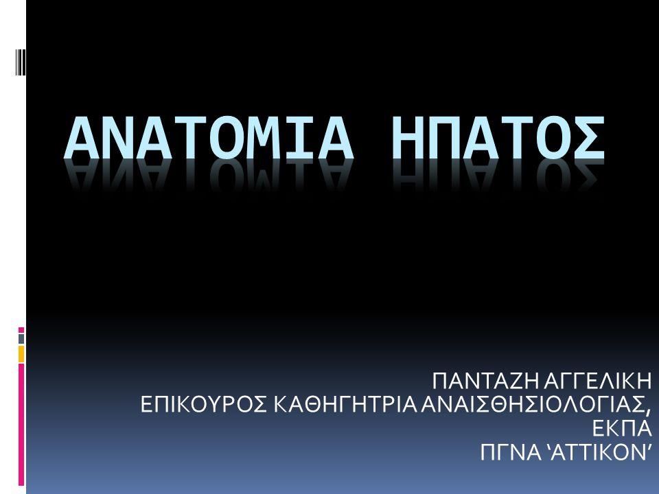 ΑΝΑΤΟΜΙΑ ΗΠΑΤΟΣ ΠΑΝΤΑΖΗ ΑΓΓΕΛΙΚΗ