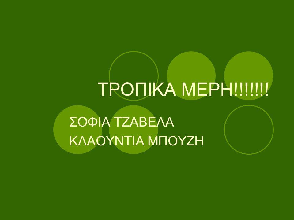 ΣΟΦΙΑ ΤΖΑΒΕΛΑ ΚΛΑΟΥΝΤΙΑ ΜΠΟΥΖΗ