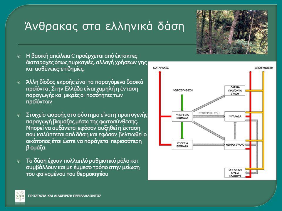Άνθρακας στα ελληνικά δάση